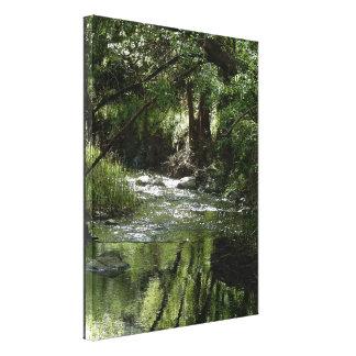 Impresión de la lona - río en primavera