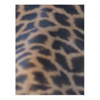 impresión de la piel de la jirafa del masai postal