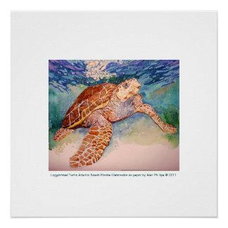 Impresión de la tortuga de mar del necio