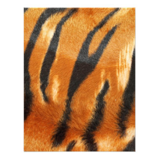 Impresión de las rayas del tigre del safari comunicados personales