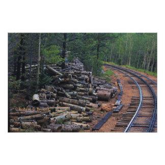 Impresión de madera máxima de la foto de la pila