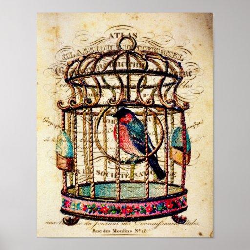 Impresión de papel francesa del arte del Birdcage  Póster