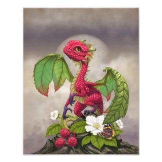 Impresión del dragón 11x14 de la frambuesa foto