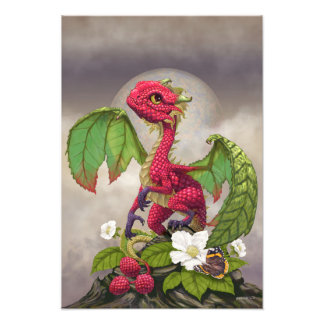 Impresión del dragón 13x19 de la frambuesa foto