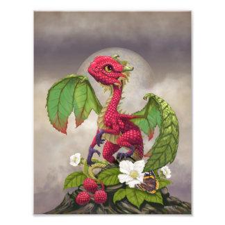 Impresión del dragón 8.5x11 de la frambuesa foto