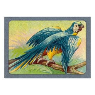 Impresión del loro del vintage plantillas de tarjetas de visita