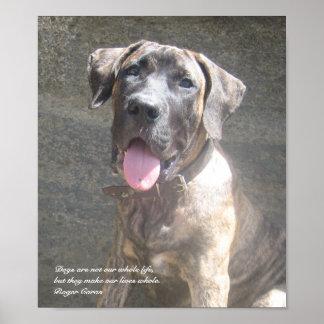 Impresión del perrito de Presa Canario Posters