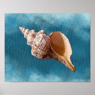 Impresión del Seashell de la concha
