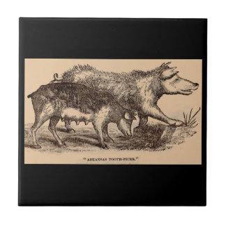 Impresión del siglo XIX de los cerdos del Azulejo De Cerámica
