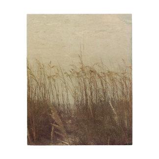 Impresión En Madera A través de las dunas II