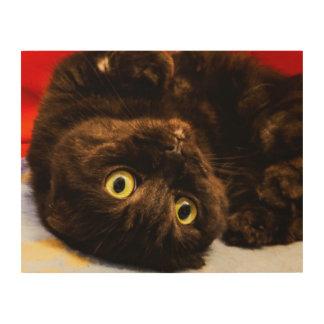 Impresión En Madera Amantes del gato de Munchkin