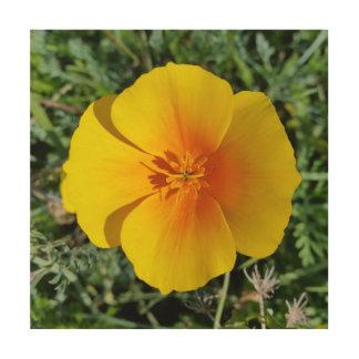 Impresión En Madera amarillo del otoño