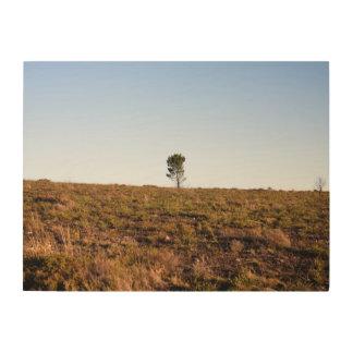 Impresión En Madera Árbol solitario