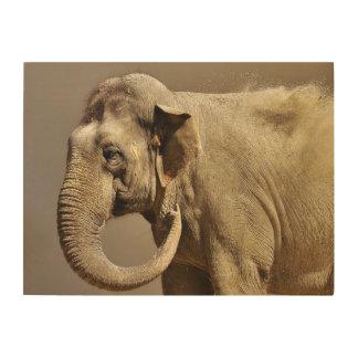 Impresión En Madera Baño de la arena del elefante asiático