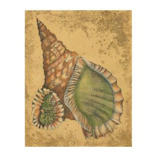 Impresión En Madera Brown y Seashell verde