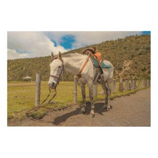 Impresión En Madera Caballo blanco implicado en el parque nacional de