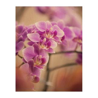 Impresión En Madera Cadena de flor de color rosa oscuro de la orquídea