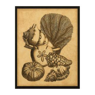 Impresión En Madera Cáscaras neutrales y colección coralina