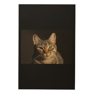 IMPRESIÓN EN MADERA CAT CURIOSO
