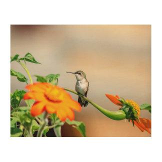 Impresión En Madera colibrí 10x8 en una planta floreciente