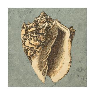 Impresión En Madera Concha lavada a la piedra Shell