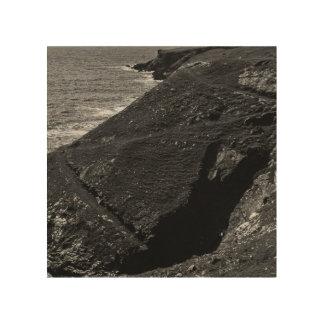 Impresión En Madera Costa en blanco y negro