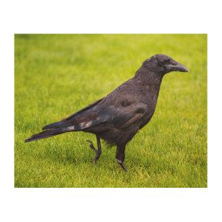 Impresión En Madera Cuervo negro