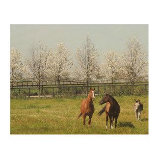 Impresión En Madera Dos caballos y un burro que pasta en primavera
