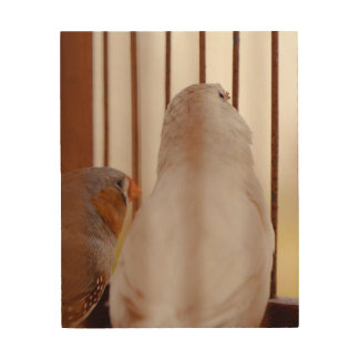 Impresión En Madera Dos pájaros lindos del pinzón en jaula