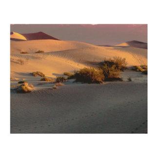 Impresión En Madera Dunas de arena planas del Mesquite Death Valley