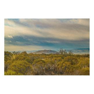 Impresión En Madera Escena patagona del paisaje, Santa Cruz, la