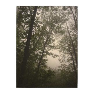 Impresión En Madera Fotografía pacífica de niebla de la arboleda del