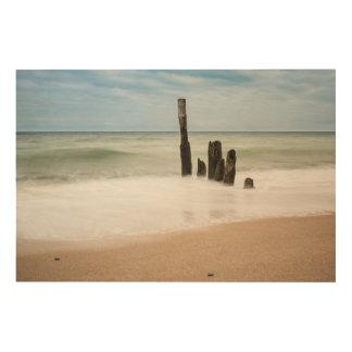 Impresión En Madera Groynes en la orilla del mar Báltico