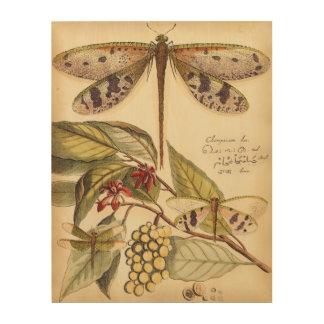 Impresión En Madera Libélulas con las hojas y la fruta