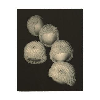 Impresión En Madera Manzanas en envolturas