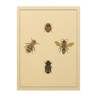 Impresión En Madera Moscas y escarabajos por el estudio de Vision