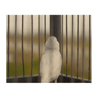 Impresión En Madera Pájaro en jaula