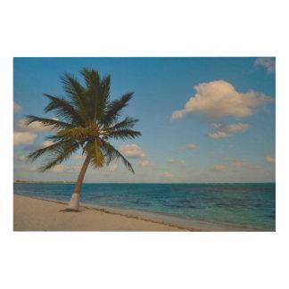 Impresión En Madera Palmera en una playa