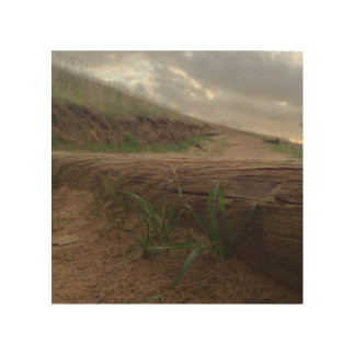 Impresión En Madera Pasos herbosos