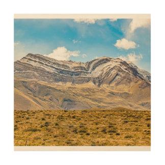 Impresión En Madera Patagonia la Argentina de las montañas Nevado los