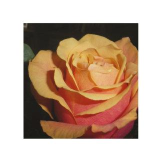 Impresión En Madera Rosa rojo amelocotonado