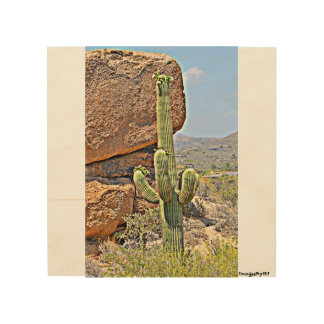 """Impresión En Madera """"Saguaro en pared de madera Art. de los cantos"""