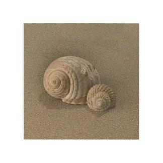 Impresión En Madera Shell en la arena