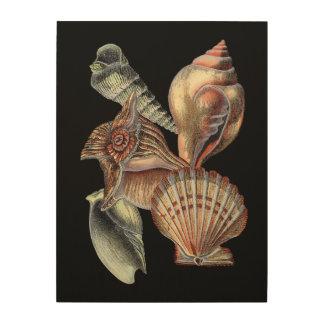 Impresión En Madera Tesoros del mar