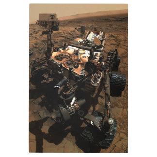 Impresión En Metal Marte Rover Selfie