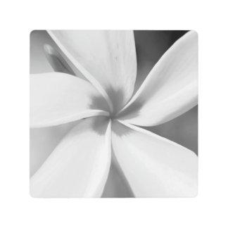 Impresión En Metal Plumeria - retrato macro blanco y negro