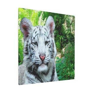 Impresión En Metal Tigre blanco
