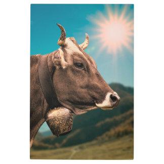 Impresión En Metal Vaca alpina que lleva una campana
