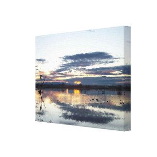 Impresión estirada fotografía de la salida del sol lona estirada galerias