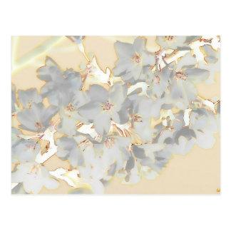 Impresión floral en colores pastel postal